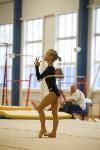 Спортивная гимнастика в Туле 3.12, Фото: 83
