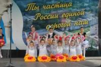 День города в Донском, Фото: 5