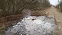 Столичный мусор в Тульской области, Фото: 3