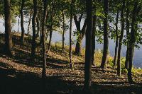 Летний день в богородицком парке, Фото: 40