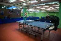 Как в Туле возрождают настольный теннис , Фото: 38