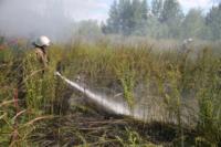 Пожар в гаражном кооперативе №17, Фото: 38