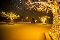 В Туле ночью бушевал буран, Фото: 39