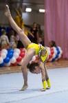 Соревнования по художественной гимнастике 31 марта-1 апреля 2016 года, Фото: 71