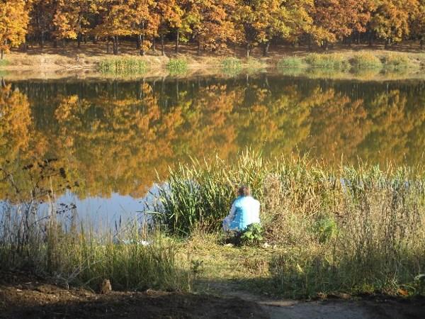 Отражение, парк в Щекино
