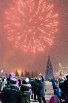На площади Ленина прошло закрытие главной городской ёлки, Фото: 125