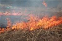"""Возгорание сухой травы напротив ТЦ """"Метро"""", 7.04.2014, Фото: 14"""