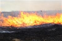 Дым от горящей травы, Фото: 8