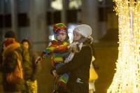 В Туле завершились новогодние гуляния, Фото: 1