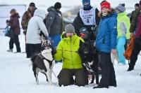 Праздник северных собак на Куликовом поле , Фото: 74