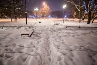 Сказочная зима в Туле, Фото: 26