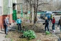 Посадка деревьев во дворе на ул. Максимовского, 23, Фото: 18