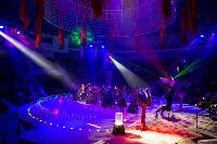 Шоу фонтанов «13 месяцев» в Тульском цирке – подарите себе и близким путевку в сказку!, Фото: 98