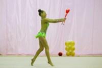 Межрегиональный турнир по художественной гимнастике — «Осенний вальс». 6-7 сентября 2014, Фото: 25