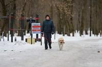 В Центральном парке прошёл рейд по выявлению нарушений выгула собак, Фото: 19
