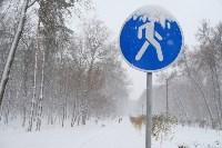 Снежная Тула. 15 ноября 2015, Фото: 17