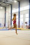 Спортивная гимнастика в Туле 3.12, Фото: 97