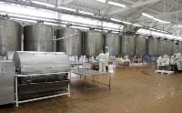 Алексей Дюмин посетил Узловский молочный комбинат, Фото: 8