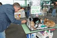 III благотворительный фестиваль помощи животным, Фото: 7