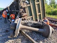В Тульской области грузовой поезд сошел с рельсов, Фото: 14