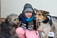 Праздник северных собак на Куликовом поле , Фото: 128