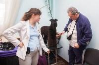 Всероссийская выставка собак 2017, Фото: 29