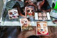 Благотворительный фестиваль помощи животным, Фото: 31