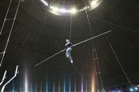 Новая программа в тульском цирке, Фото: 19
