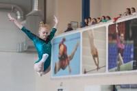 Первенство ЦФО по спортивной гимнастике среди юниорок, Фото: 51
