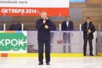 Легенды советского хоккея в Алексине., Фото: 57