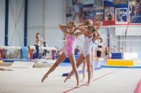 Тульские гимнастки готовятся к первенству России, Фото: 1