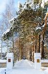 Снежное Поленово, Фото: 10
