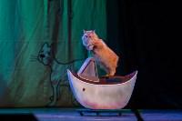 Театр кошек в ГКЗ, Фото: 46