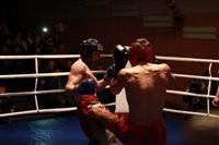 В Туле прошла матчевая встреча звезд кикбоксинга, Фото: 20