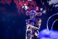 Шоу фонтанов «13 месяцев»: успей увидеть уникальную программу в Тульском цирке, Фото: 245