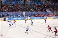 Женский хоккейный матч Канада-Финляндия. Зимняя Олимпиада в Сочи, Фото: 1