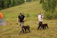 Выставка охотничьих собак под Тулой, Фото: 102