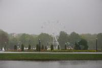 День Победы в Центральном парке, Фото: 35