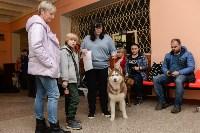 """Выставки собак в ДК """"Косогорец"""", Фото: 47"""