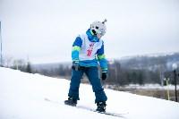 I-й этап Кубка Тулы по горным лыжам и сноуборду., Фото: 64