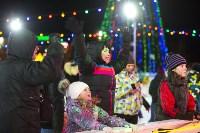 В Туле завершились новогодние гуляния, Фото: 23