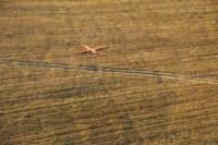 Тула с высоты птичьего полёта, 24.10.2014, Фото: 52