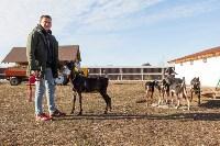Семён Яблоновский и его ферма, Фото: 10