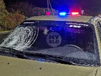 На трассе М-2 в Туле сбили бегающего по дороге пешехода, Фото: 2