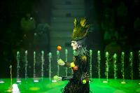 Шоу фонтанов «13 месяцев» в Тульском цирке – подарите себе и близким путевку в сказку!, Фото: 55