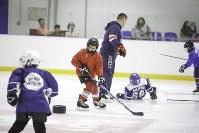 Легенды хоккея провели мастер-класс в Туле, Фото: 45