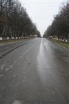 Ремонтные работы в ЦПКиО им. Белоусова, Фото: 54
