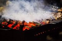 Главную ёлку Тулы открыли грандиозным фейерверком, Фото: 62