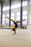 Спортивная гимнастика в Туле 3.12, Фото: 131