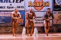 Чемпионат по бодибилдингу и бодифитнесу «Мистер и Мисс Тула - 2015», Фото: 200
